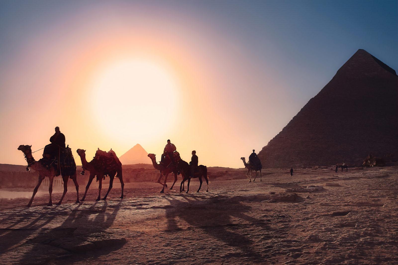Sahara, Egypt, poušť, velbloudi